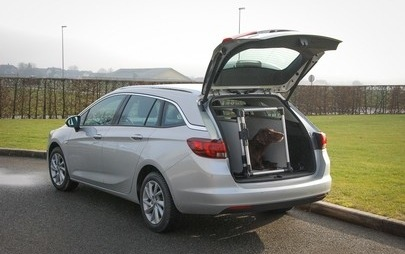 Opel podprl projekt AMZS in Motorevije »Varen prevoz psov«